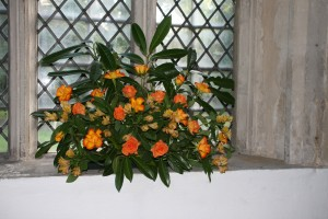 Away day and Harvest festival 2014 023
